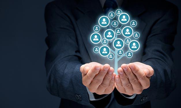 Talent development talent development solutions workforce talent development Talexes Partners